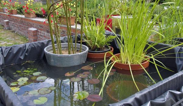 Les mares au jardin hortical - Bache pour bassin de jardin ...